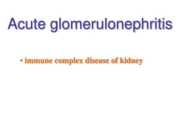 Acute glomerulonephritis