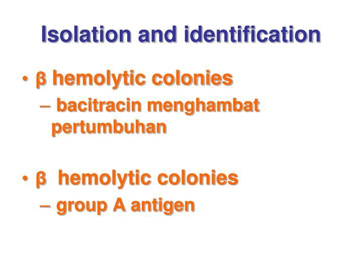 Isolation and identification