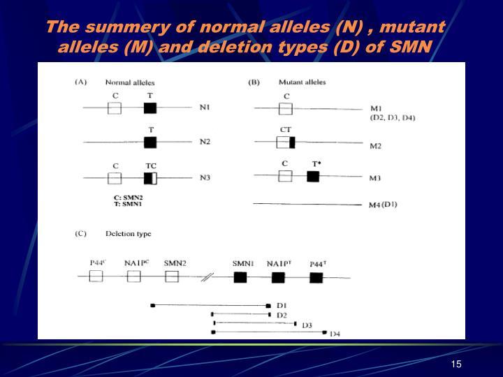 The summery of normal alleles (N) , mutant alleles (M) and deletion types (D) of SMN