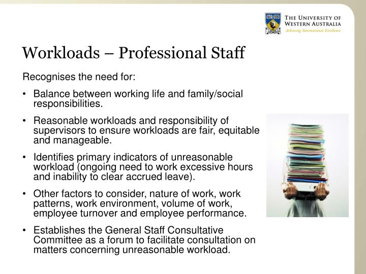 Workloads – Professional Staff