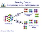forming groups homogeneous vs heterogeneous
