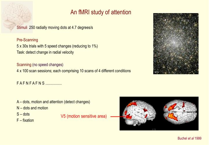 An fMRI study of attention