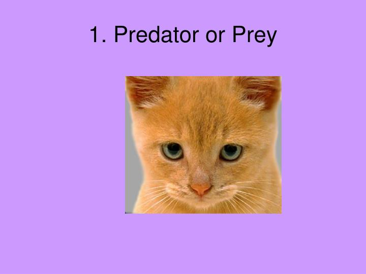 1. Predator or Prey