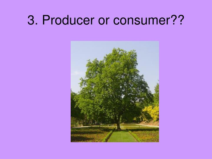 3. Producer or consumer??