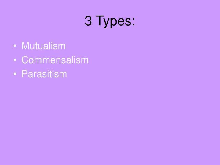 3 Types: