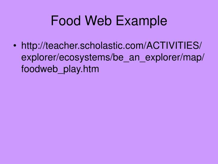 Food Web Example