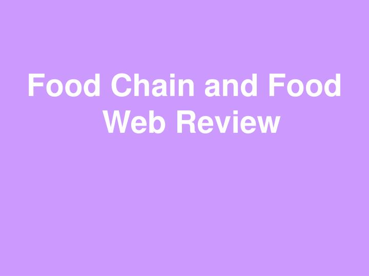 Food Chain and Food Web Review
