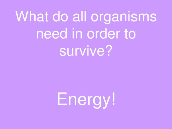 What do all organisms need in order to survive?