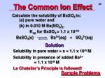 the common ion effect4