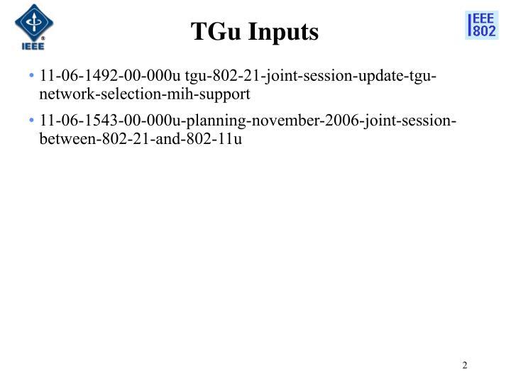 TGu Inputs