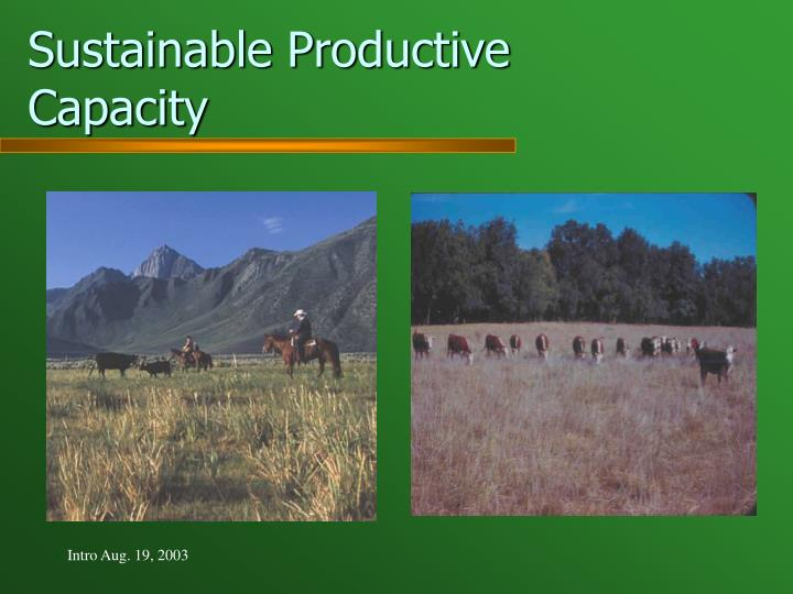Sustainable Productive Capacity