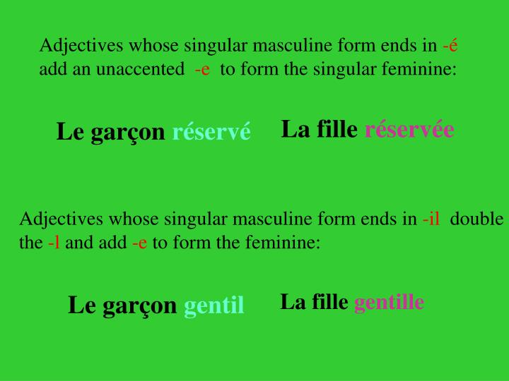 Adjectives whose singular masculine form ends in