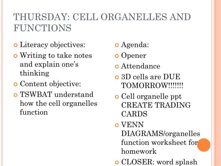 THURSDAY: CELL ORGANELLES AND FUNCTIONS