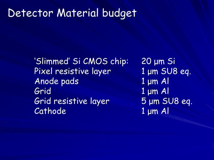 Detector Material budget
