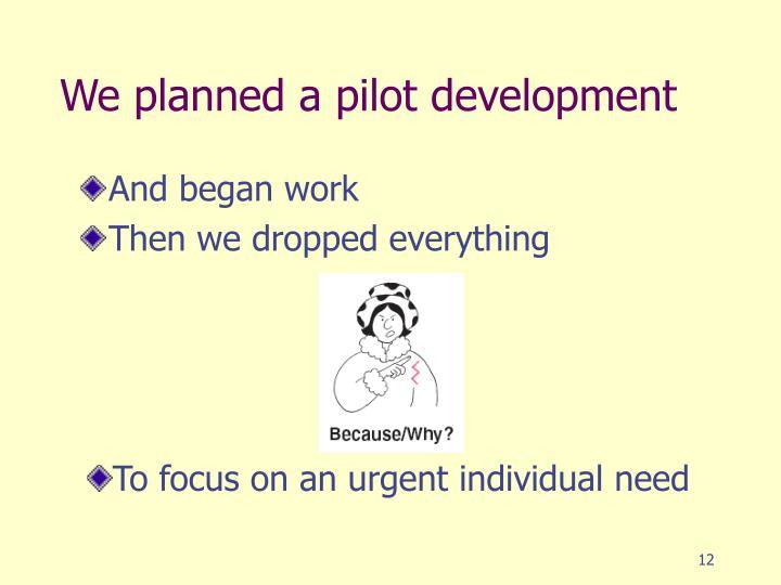 We planned a pilot development