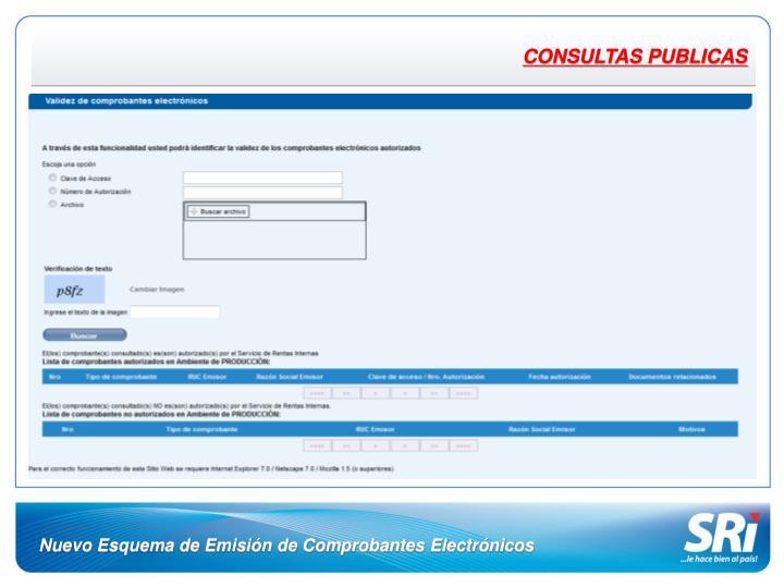 CONSULTAS PUBLICAS