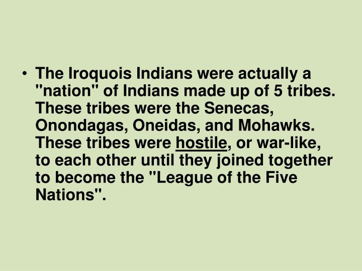 "The Iroquois Indians were actually a ""nation"" of Indians made up of 5 tribes. These tribes were the Senecas, Onondagas, Oneidas, and Mohawks. These tribes were"