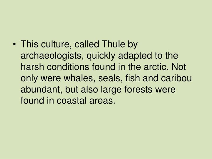 This culture, called Thule by archaeologists, quickly adapted to the harsh conditions found in the arctic. Not only were whales, seals, fish and caribou abundant, but also large forests were found in coastal areas.