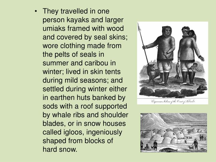 They travelled in one person kayaks and larger umiaks framed with wood and covered by seal skins; wore clothing made from the pelts of seals in summer and caribou in winter; lived in skin tents during mild seasons; and settled during winter either in earthen huts banked by sods with a roof supported by whale ribs and shoulder blades, or in snow houses called igloos, ingeniously shaped from blocks of hard snow.