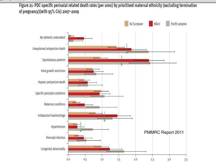 PMMRC Report 2011