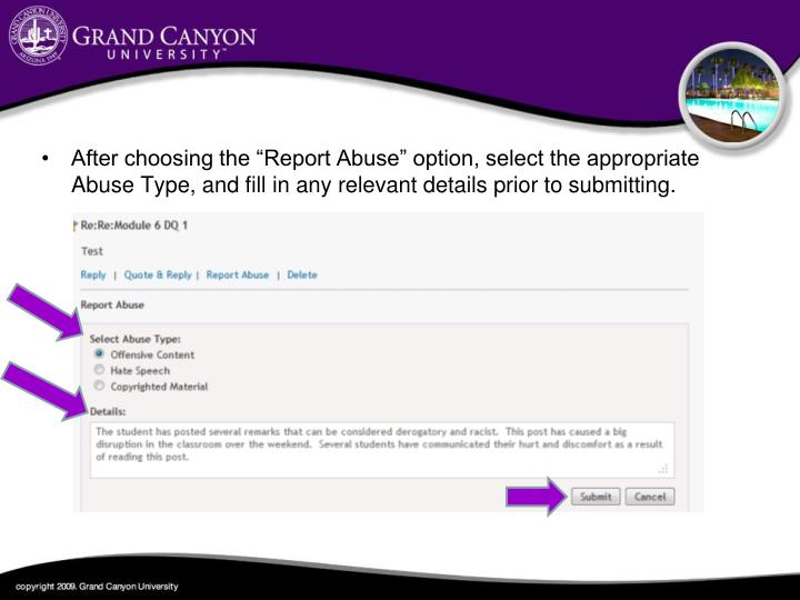"After choosing the ""Report Abuse"" option, select the appropriate Abuse Type, and fill in any relevant details prior to submitting."