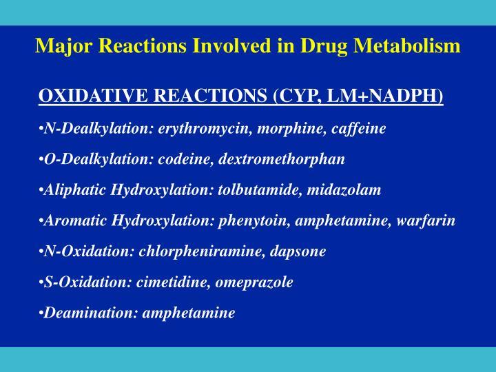 Major Reactions Involved in Drug Metabolism