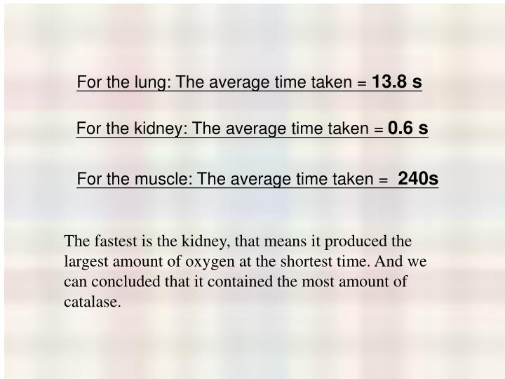 For the lung: The average time taken =