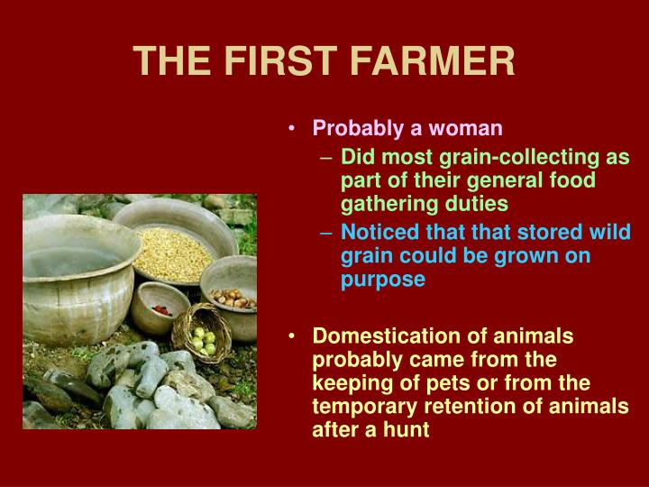 The first farmer