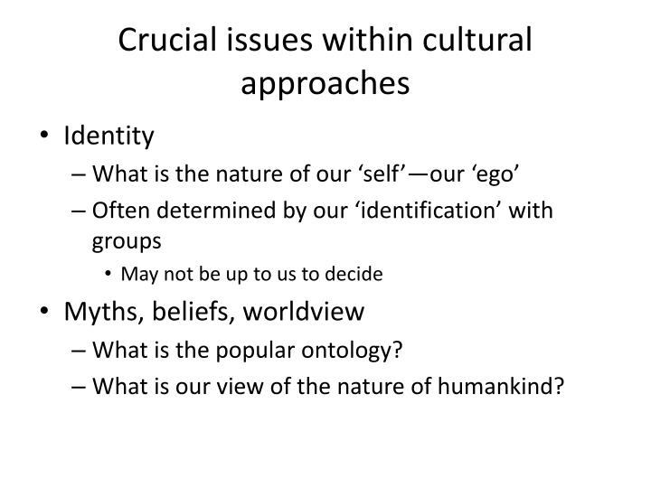 Crucial issues within cultural approaches