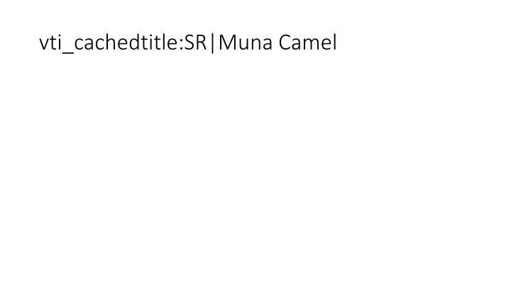 vti_cachedtitle:SR|Muna Camel