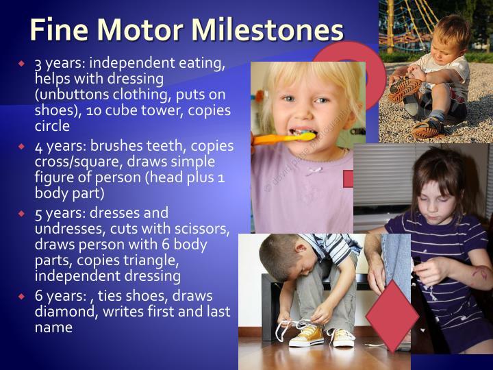 Fine Motor Milestones