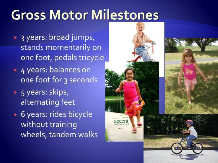 Gross Motor Milestones