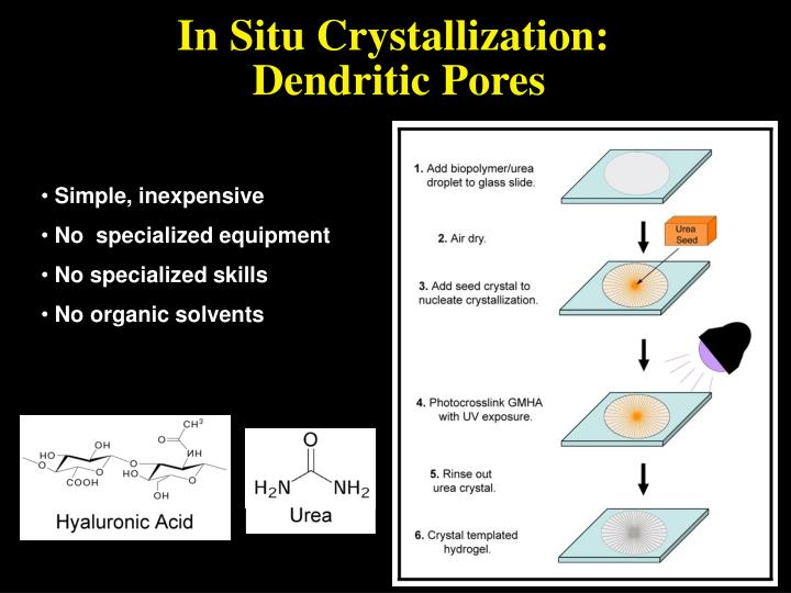 In Situ Crystallization: