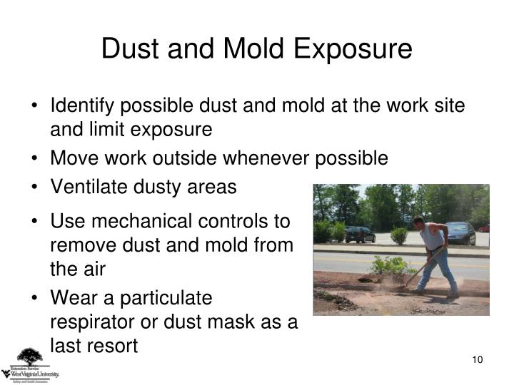 Dust and Mold Exposure
