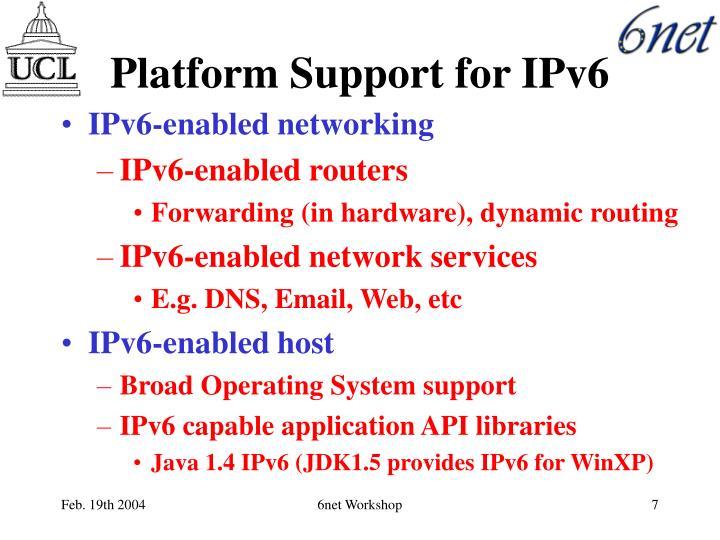 Platform Support for IPv6