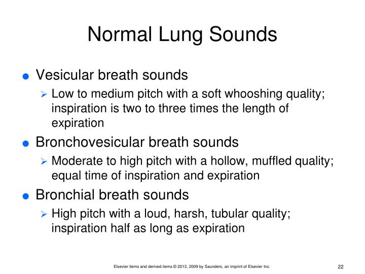 Normal Lung Sounds