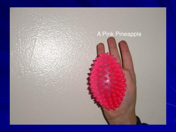 A Pink Pineapple