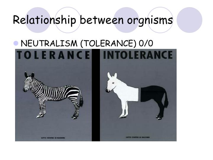 Relationship between orgnisms