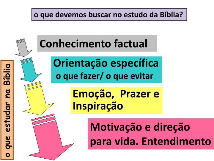 o que devemos buscar no estudo da Bíblia?