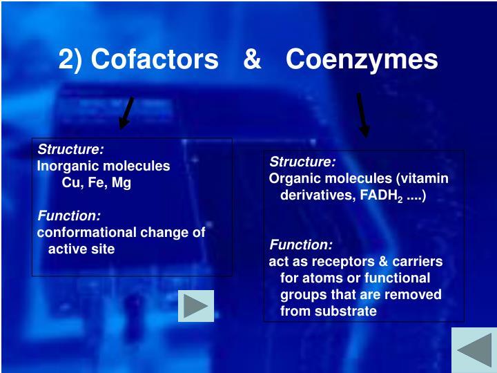 2) Cofactors   &   Coenzymes