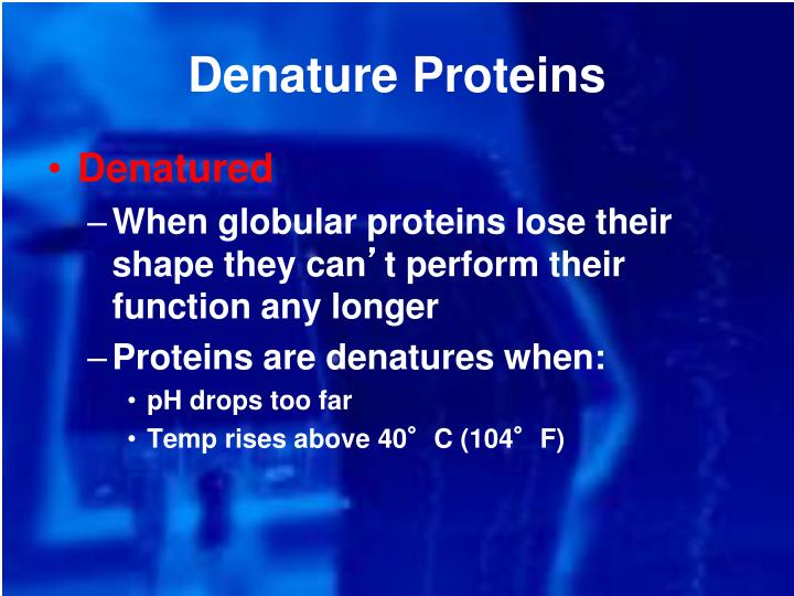 Denature Proteins