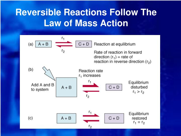 Reversible Reactions Follow The