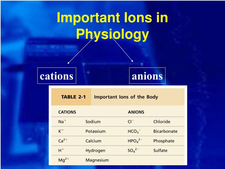 Important Ions in Physiology
