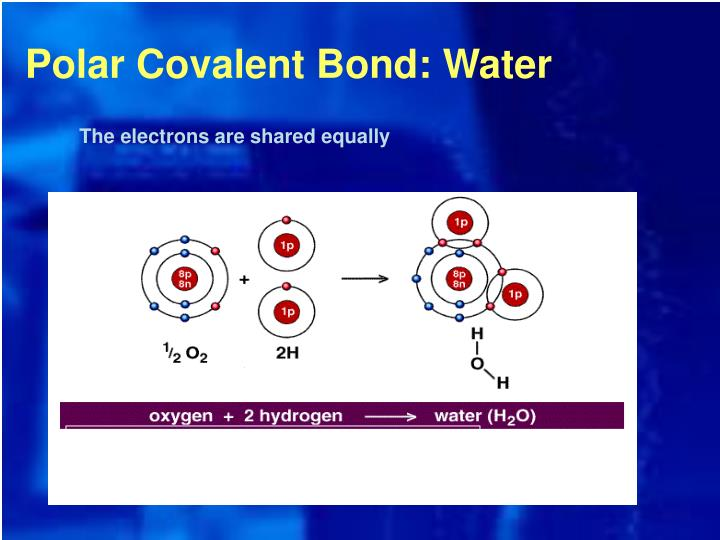 Polar Covalent Bond: Water