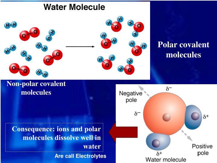 Polar covalent molecules
