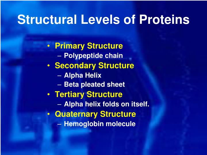 Structural Levels of Proteins