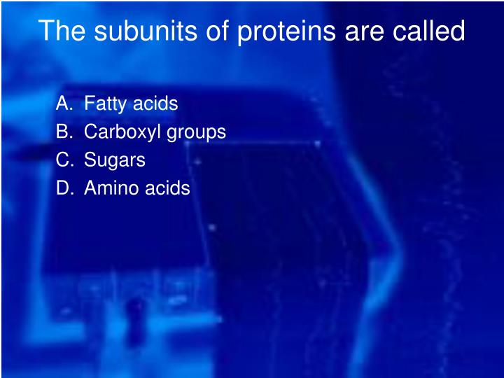 The subunits of proteins are called