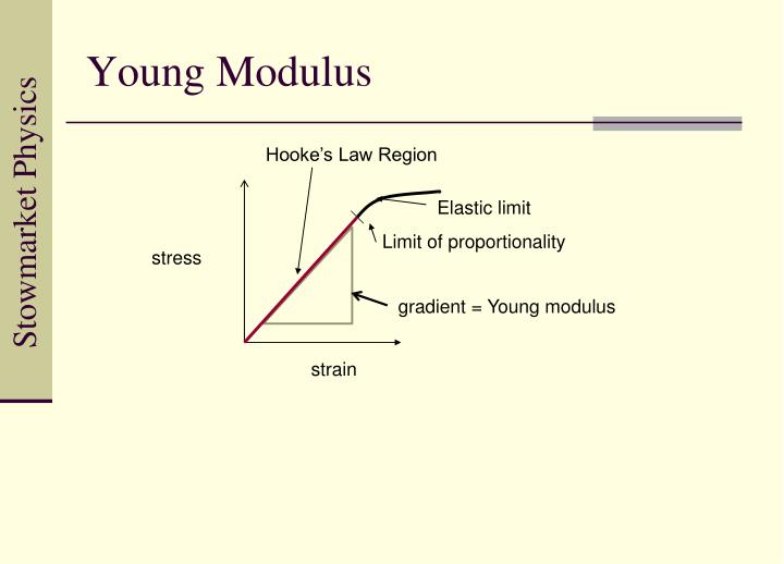Young Modulus