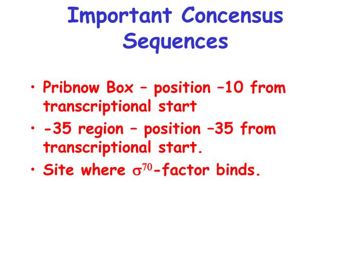 Important Concensus Sequences