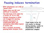 pausing induces termination